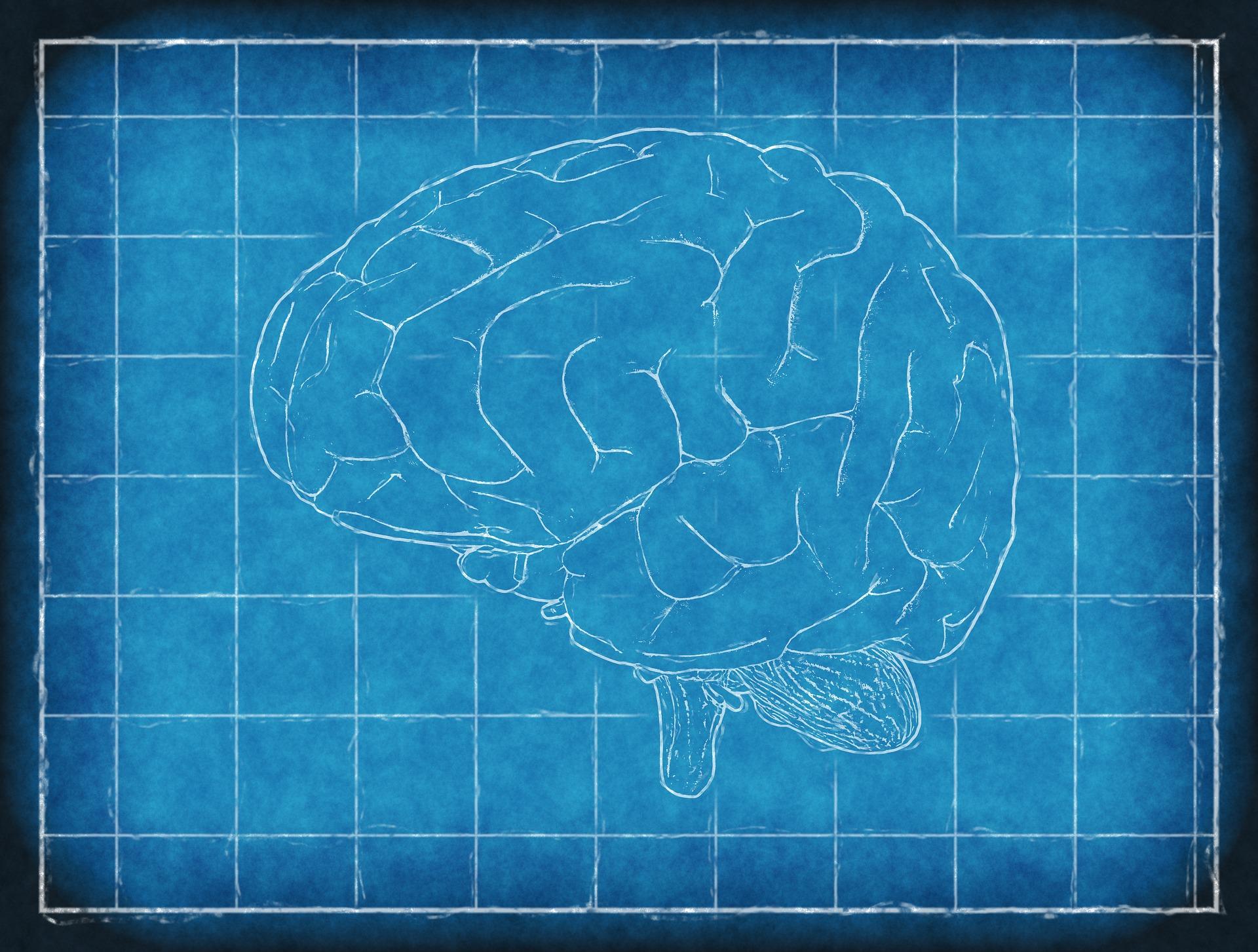 jak zwiększyć wydajność mózgu